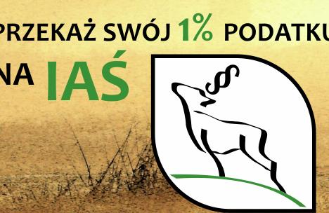 Finlandia zredukuje swoja populację wilka jesienią 2021r.